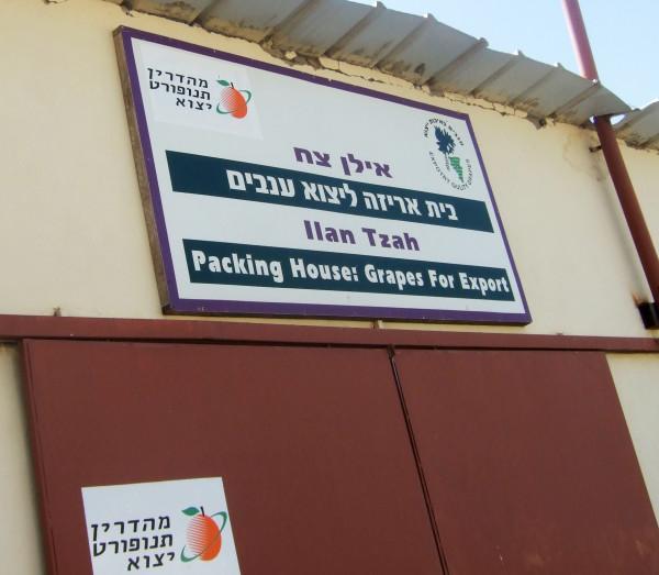 A Mehadrin packing house in the illegal Beka'ot settlement